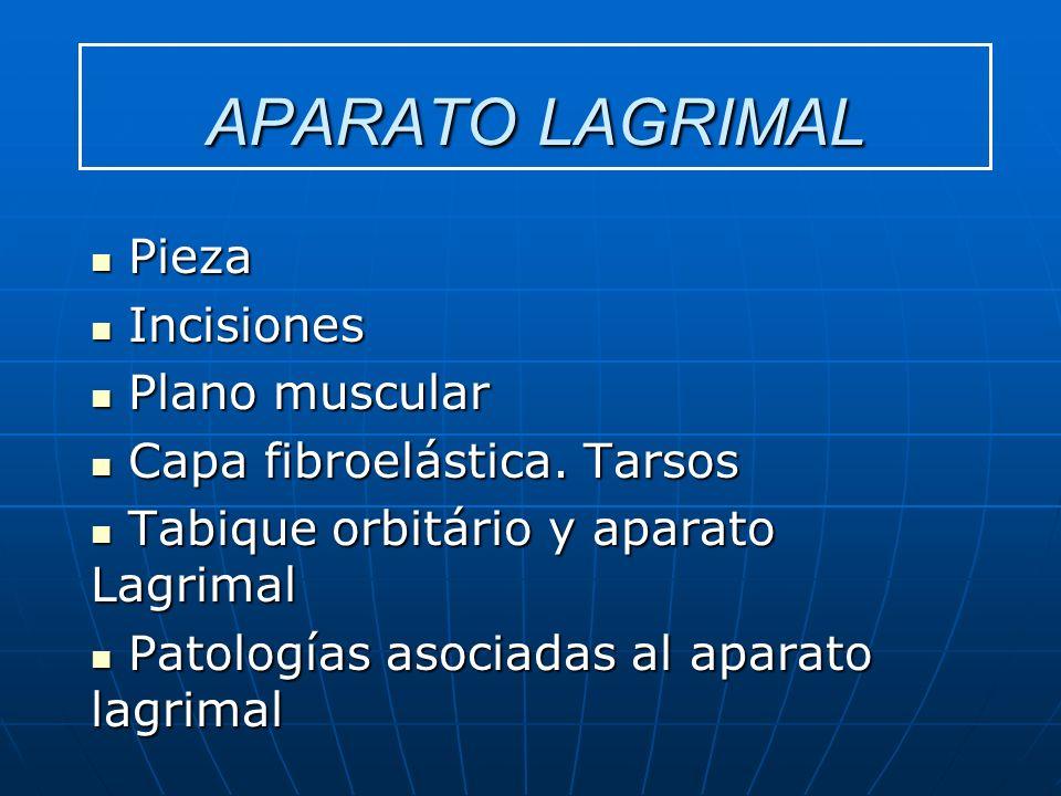 APARATO LAGRIMAL Pieza Pieza Incisiones Incisiones Plano muscular Plano muscular Capa fibroelástica. Tarsos Capa fibroelástica. Tarsos Tabique orbitár