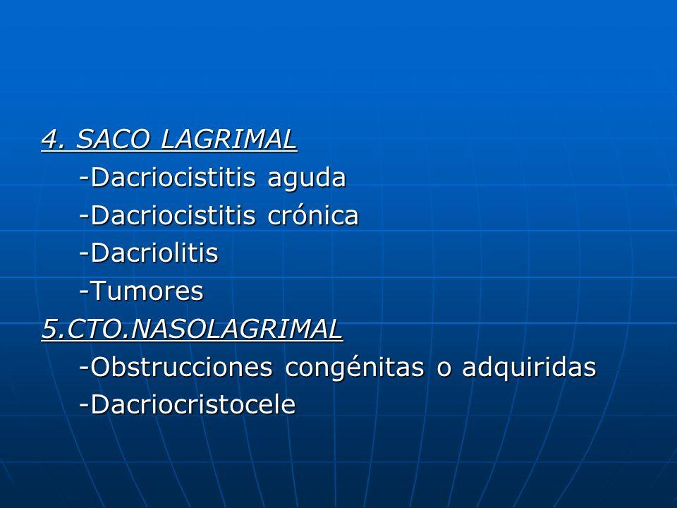 4. SACO LAGRIMAL -Dacriocistitis aguda -Dacriocistitis aguda -Dacriocistitis crónica -Dacriocistitis crónica -Dacriolitis -Dacriolitis -Tumores -Tumor