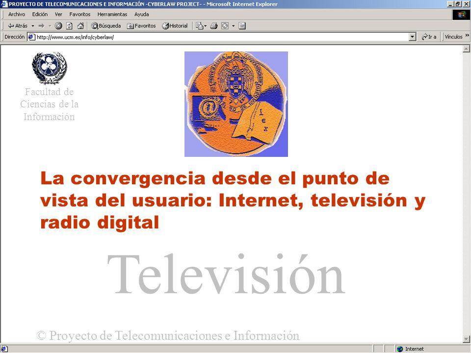 Acceso Universal La convergencia desde el punto de vista del usuario: Internet, televisión y radio digital Facultad de Ciencias de la Información © Proyecto de Telecomunicaciones e Información Televisión