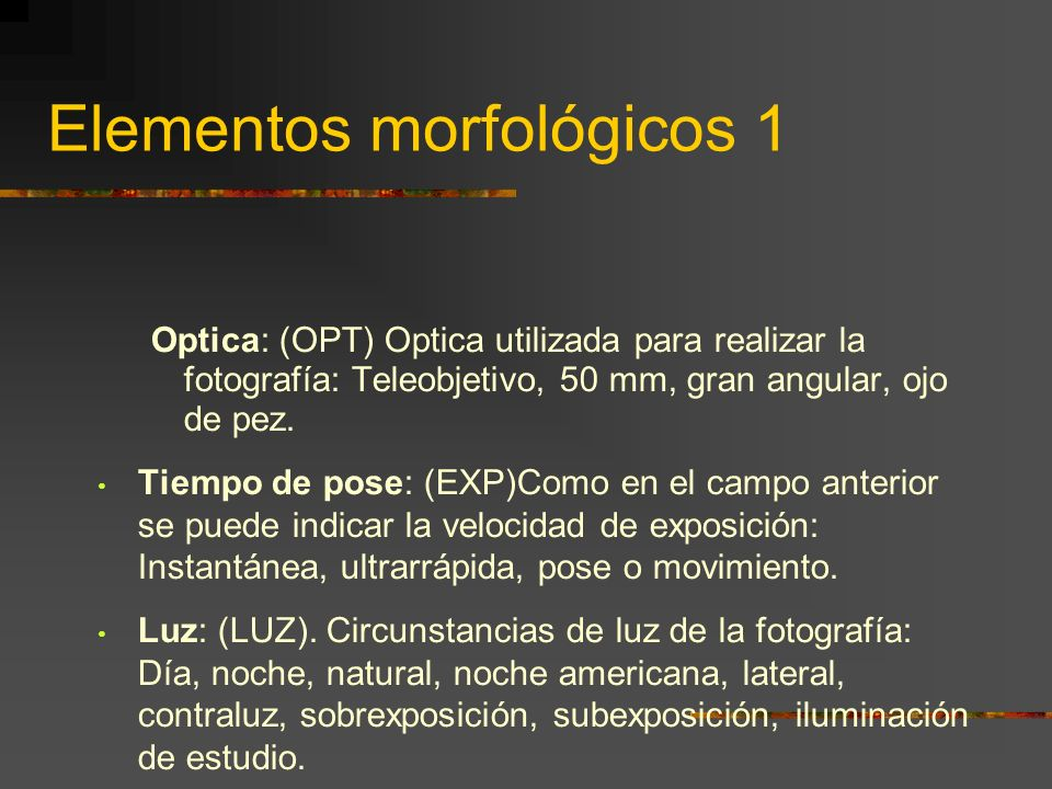 Elementos morfológicos 1 Optica: (OPT) Optica utilizada para realizar la fotografía: Teleobjetivo, 50 mm, gran angular, ojo de pez.