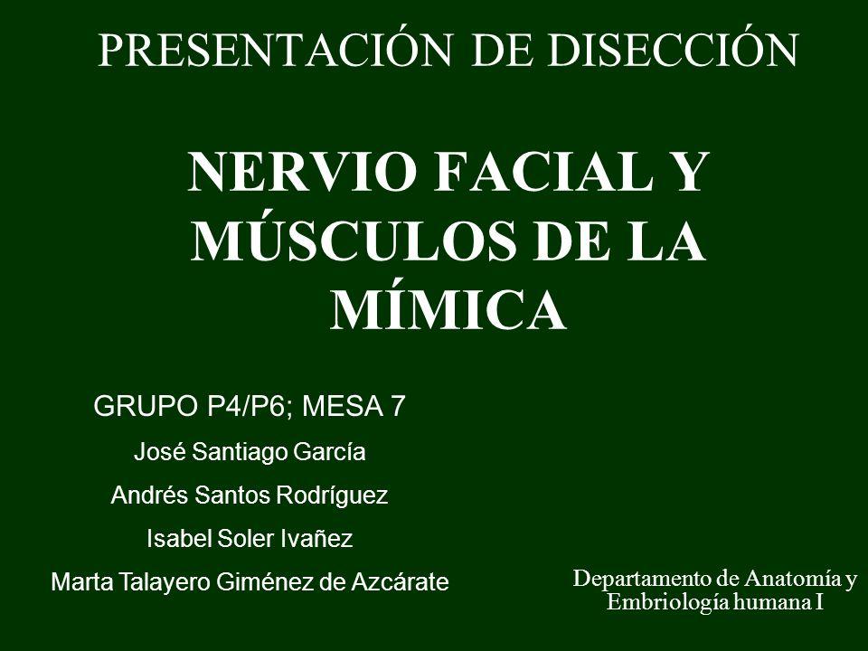 PRESENTACIÓN DE DISECCIÓN NERVIO FACIAL Y MÚSCULOS DE LA MÍMICA Departamento de Anatomía y Embriología humana I GRUPO P4/P6; MESA 7 José Santiago Garc