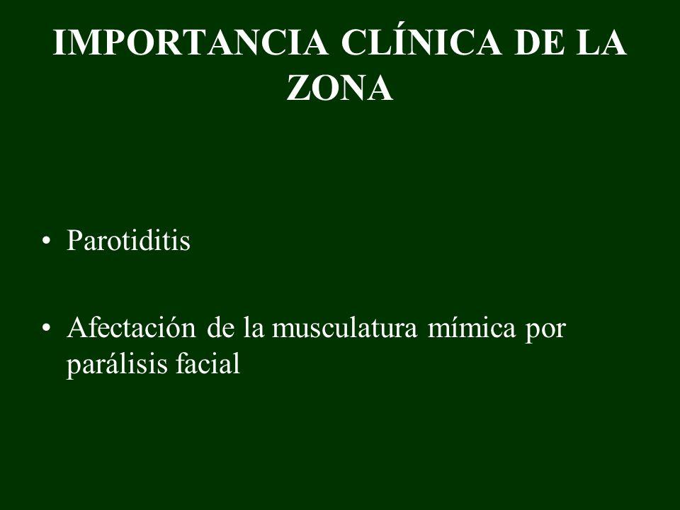 IMPORTANCIA CLÍNICA DE LA ZONA Parotiditis Afectación de la musculatura mímica por parálisis facial