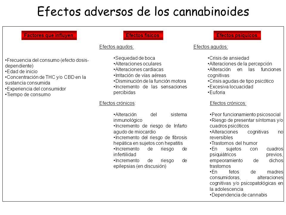Los efectos adversos derivados del consumo de cannabinoides van a depender en gran medida no sólo de la frecuencia de consumo (efecto dependiente de dosis), sino de la de la concentración de compuestos cannabinoides de cada dosis, la experiencia del consumidor o el tiempo de consumo.
