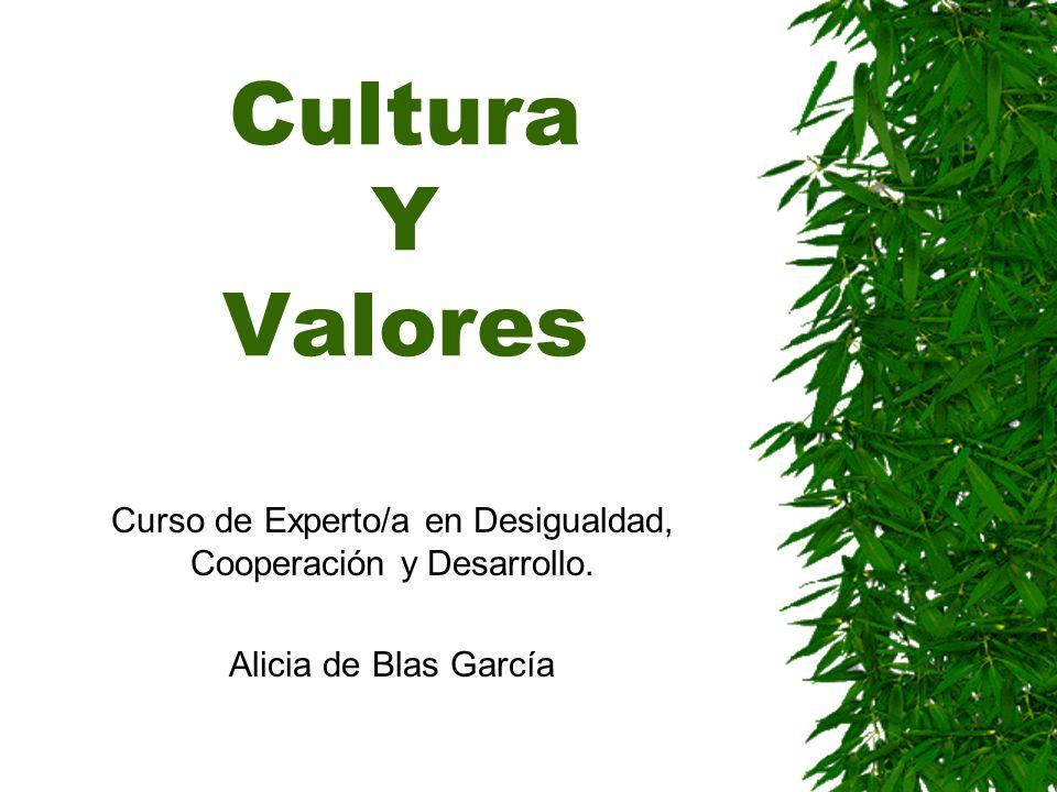 Cultura Y Valores Curso de Experto/a en Desigualdad, Cooperación y Desarrollo. Alicia de Blas García