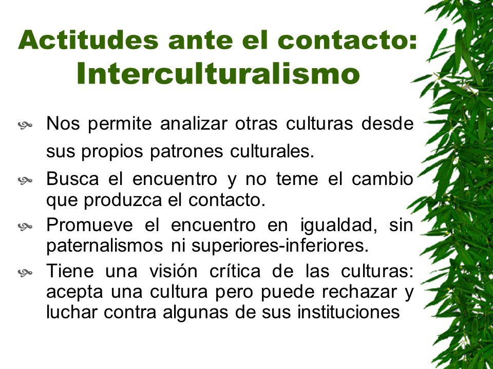 Actitudes ante el contacto: Interculturalismo Nos permite analizar otras culturas desde sus propios patrones culturales. Busca el encuentro y no teme