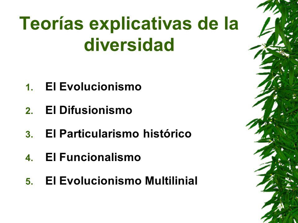 Teorías explicativas de la diversidad 1. El Evolucionismo 2. El Difusionismo 3. El Particularismo histórico 4. El Funcionalismo 5. El Evolucionismo Mu