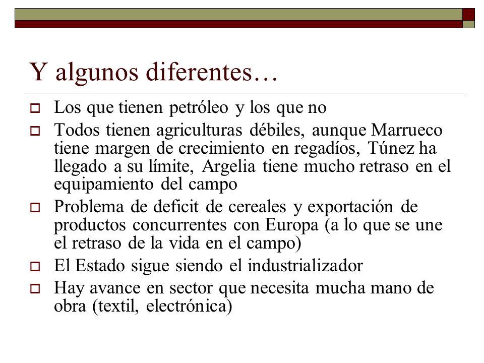 Y algunos diferentes… Los que tienen petróleo y los que no Todos tienen agriculturas débiles, aunque Marrueco tiene margen de crecimiento en regadíos,