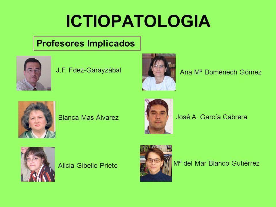 ICTIOPATOLOGIA Profesores Implicados J.F. Fdez-Garayzábal Ana Mª Doménech GómezAlicia Gibello PrietoJosé A. García CabreraMª del Mar Blanco Gutiérrez