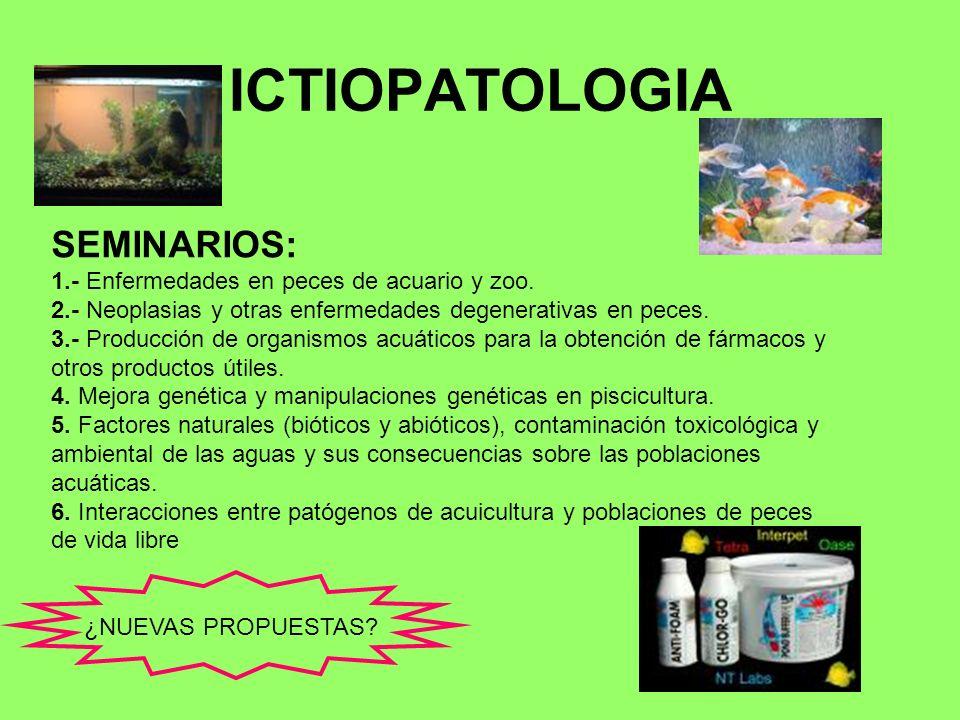 ICTIOPATOLOGIA SEMINARIOS: 1.- Enfermedades en peces de acuario y zoo. 2.- Neoplasias y otras enfermedades degenerativas en peces. 3.- Producción de o