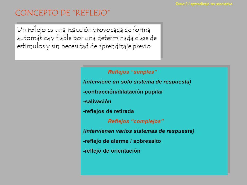 receptor Neuronas sensoriales Neuronas motoras efector EL ARCO REFLEJO Reflejo monosináptico: una sola sinapsis media entre el receptor y el efector Reflejo polisináptico: varias sinapsis median entre el receptor y el efector Reflejo monosináptico Tema 2 / aprendizaje no asociativo receptor Neuronas sensoriales Neuronas motoras efector interneuronas Reflejo polisináptico