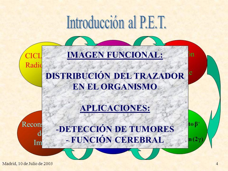 Madrid, 10 de Julio de 20034 CICLOTRÓN Radioisótopos β + Reconstrucción de la Imagen Radioisótopo + Trazador Inyección al Paciente Decaimiento β + y Aniquilación (2γ) Detección de Coincidencias IMAGEN FUNCIONAL: DISTRIBUCIÓN DEL TRAZADOR EN EL ORGANISMO APLICACIONES: -DETECCIÓN DE TUMORES - FUNCIÓN CEREBRAL