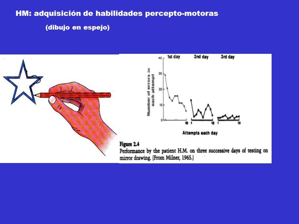 HM: adquisición de habilidades percepto-motoras (dibujo en espejo)
