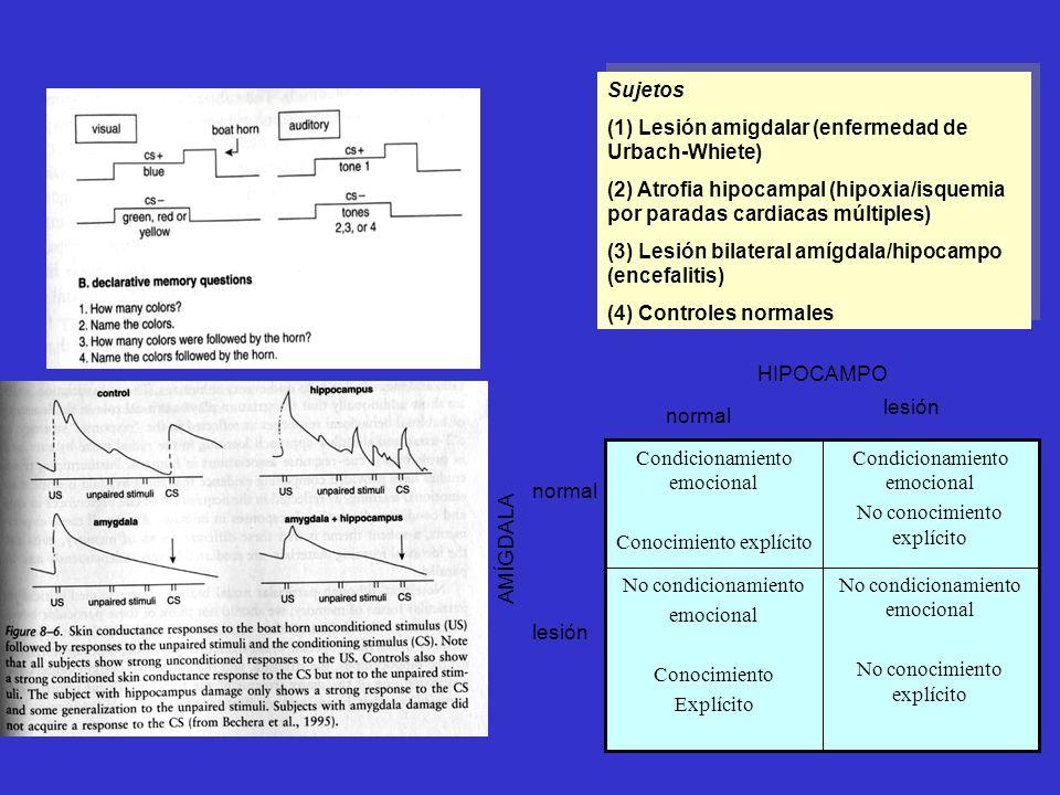 Sujetos (1) Lesión amigdalar (enfermedad de Urbach-Whiete) (2) Atrofia hipocampal (hipoxia/isquemia por paradas cardiacas múltiples) (3) Lesión bilate