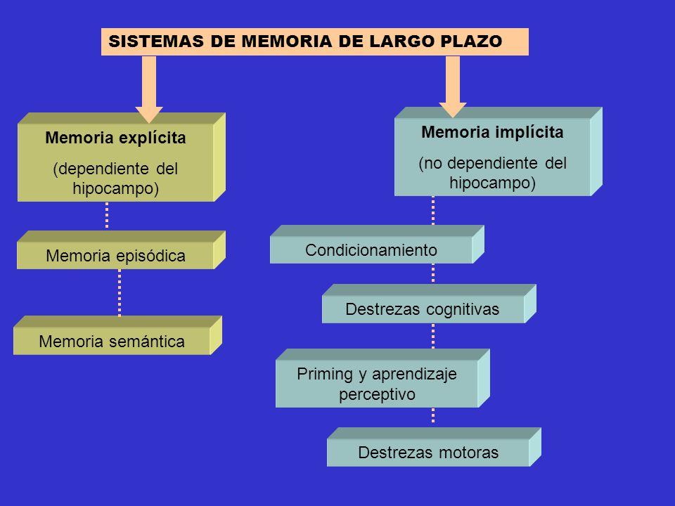 SISTEMAS DE MEMORIA DE LARGO PLAZO Memoria explícita (dependiente del hipocampo) Memoria implícita (no dependiente del hipocampo) Destrezas motoras Co