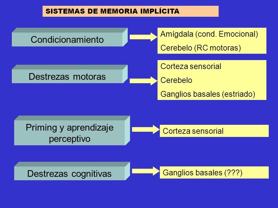 Condicionamiento Priming y aprendizaje perceptivo Amígdala (cond. Emocional) Cerebelo (RC motoras) Corteza sensorial Destrezas cognitivas Ganglios bas