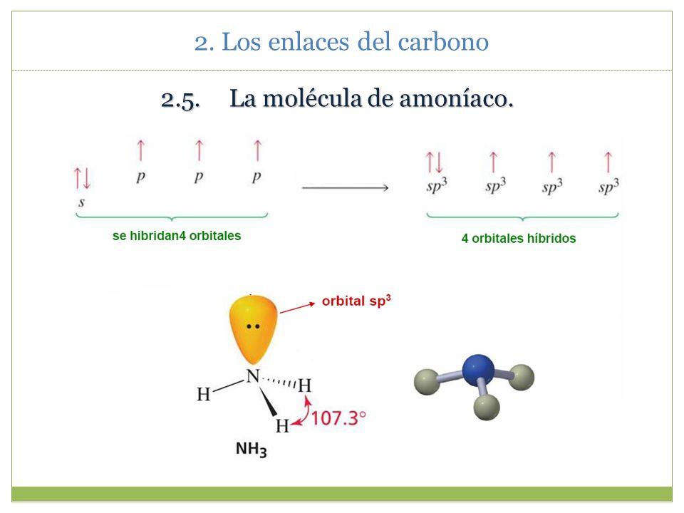 2.4.La molécula de agua