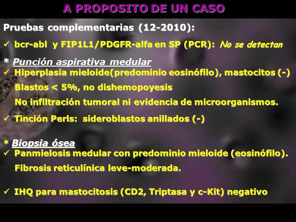 A PROPOSITO DE UN CASO Pruebas complementarias (12-2010): bcr-abl y FIP1L1/PDGFR-alfa en SP (PCR): No se detectan bcr-abl y FIP1L1/PDGFR-alfa en SP (P