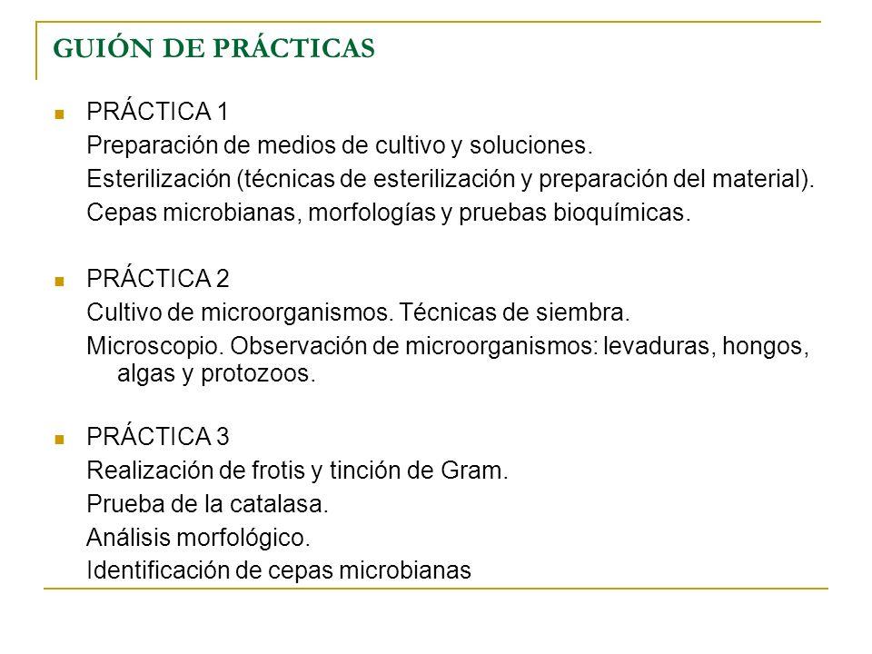 GUIÓN DE PRÁCTICAS PRÁCTICA 1 Preparación de medios de cultivo y soluciones. Esterilización (técnicas de esterilización y preparación del material). C