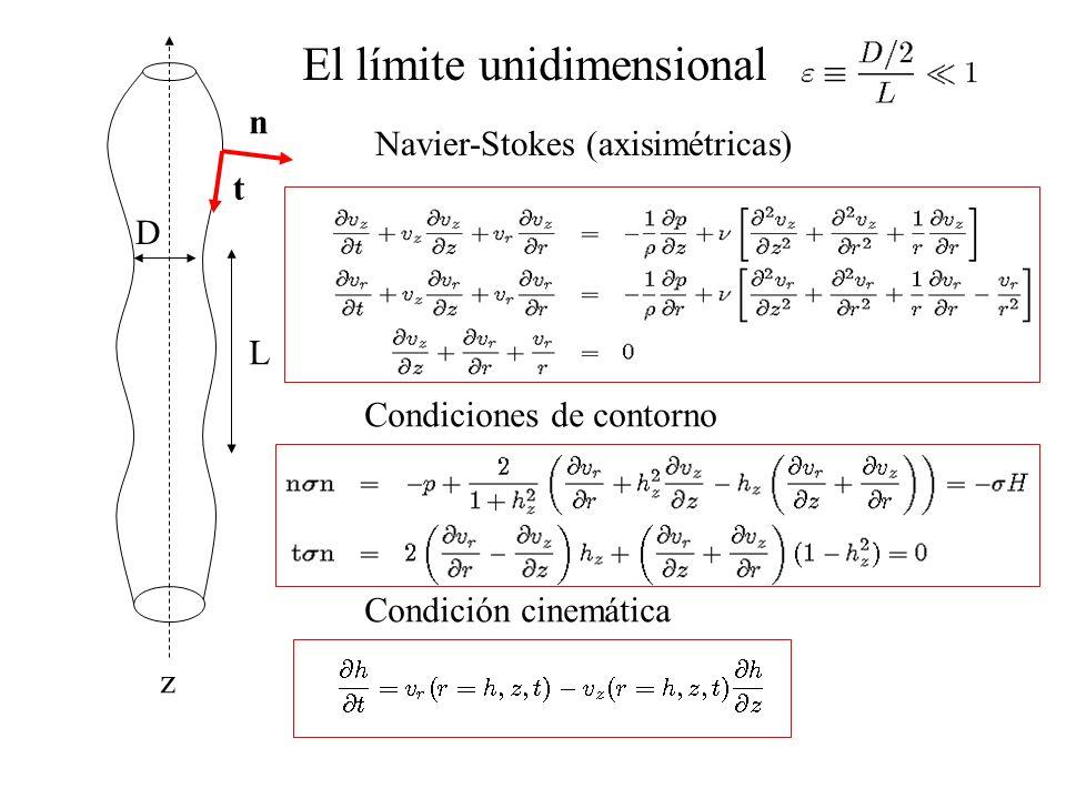 D L El límite unidimensional z n t Navier-Stokes (axisimétricas) Condiciones de contorno Condición cinemática