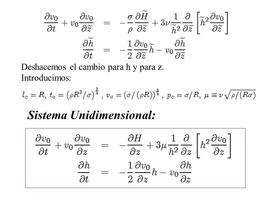 Deshacemos el cambio para h y para z. Introducimos: Sistema Unidimensional: