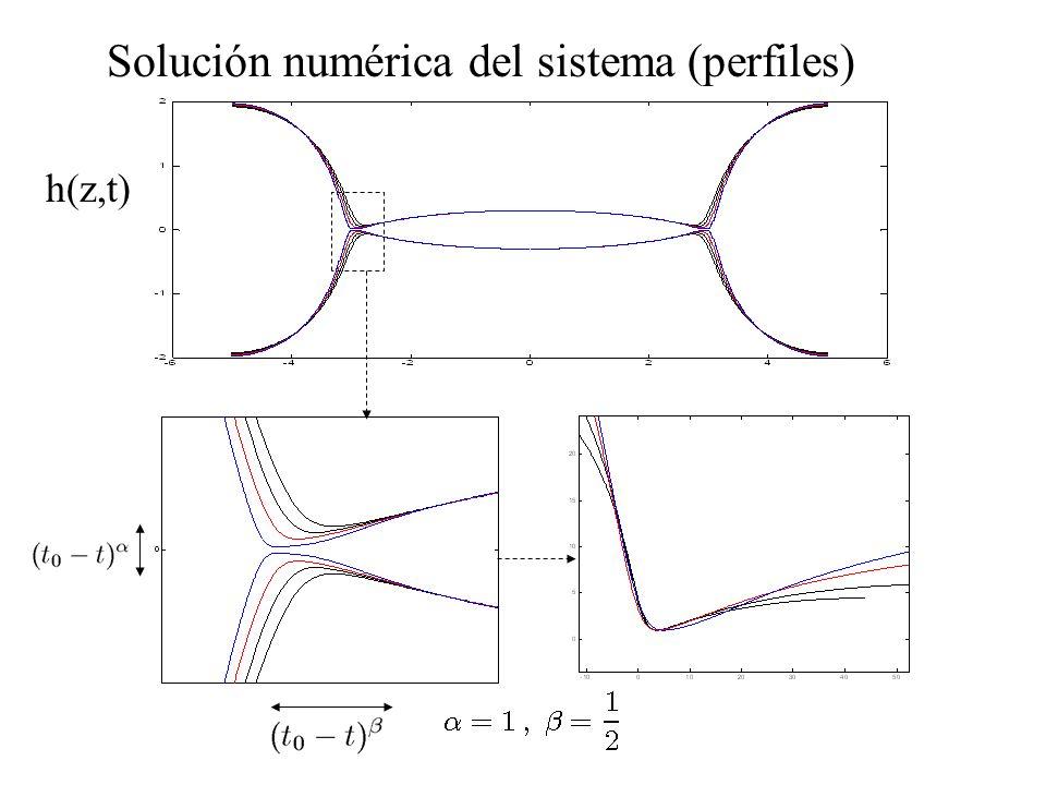 Solución numérica del sistema (perfiles) h(z,t)