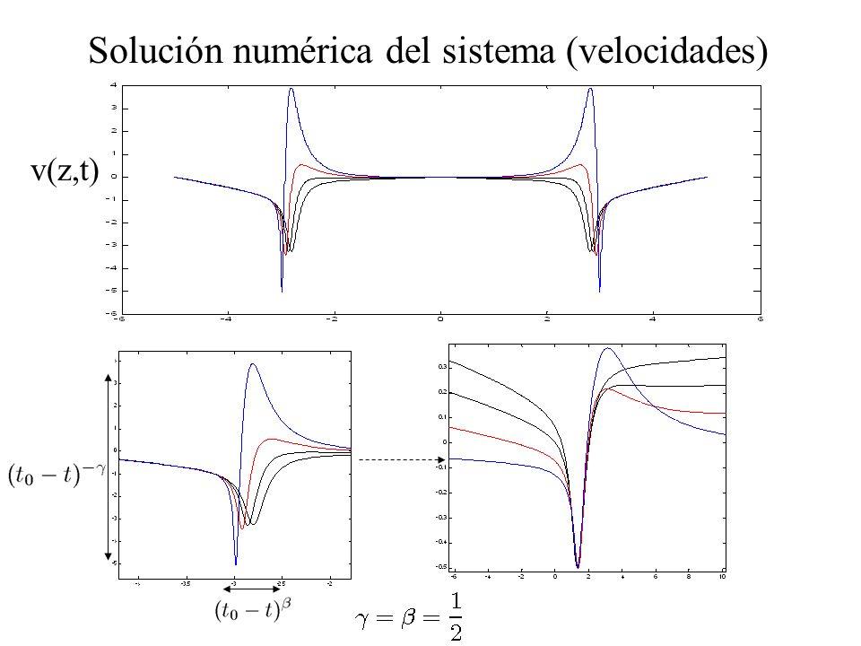 Solución numérica del sistema (velocidades) v(z,t)
