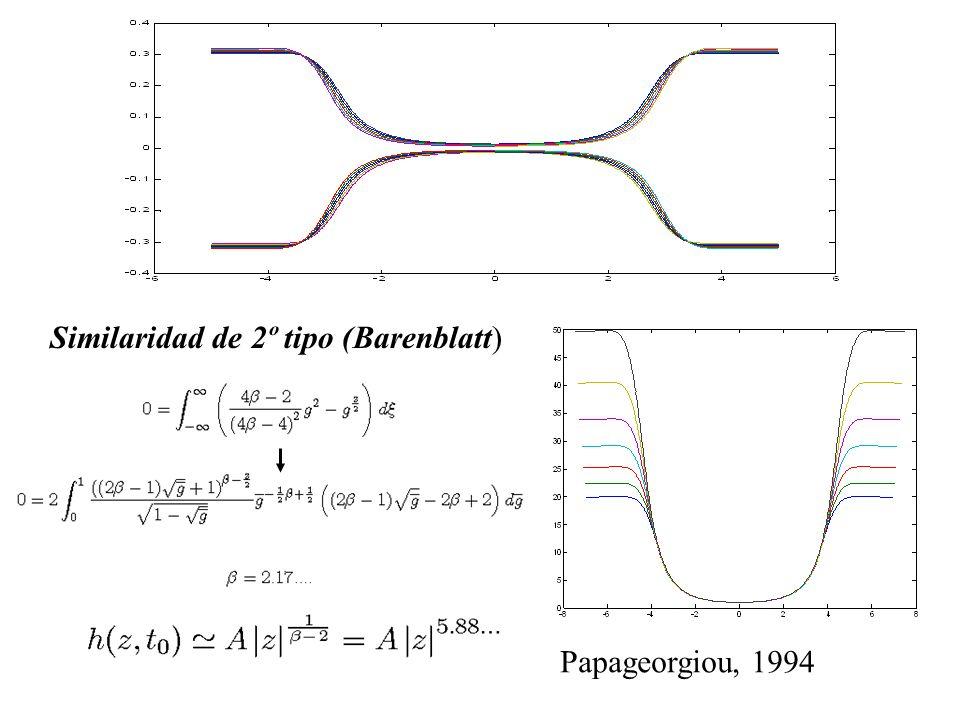 Papageorgiou, 1994 Similaridad de 2º tipo (Barenblatt)