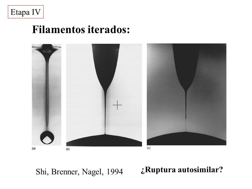 Filamentos iterados: Shi, Brenner, Nagel, 1994 Etapa IV ¿Ruptura autosimilar?