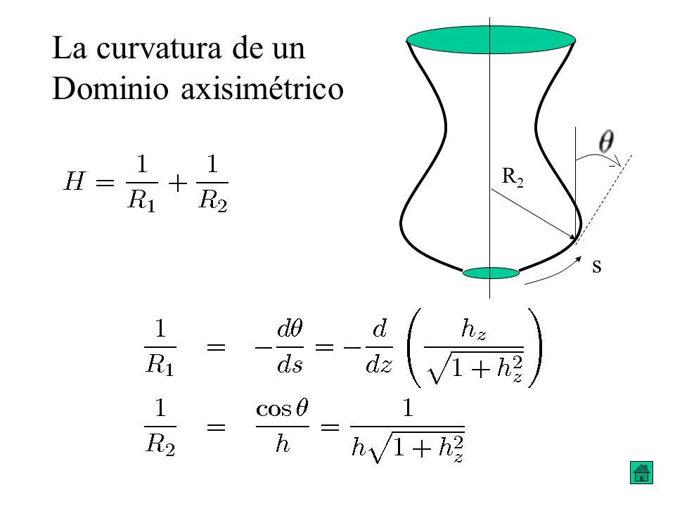 s R2R2 La curvatura de un Dominio axisimétrico