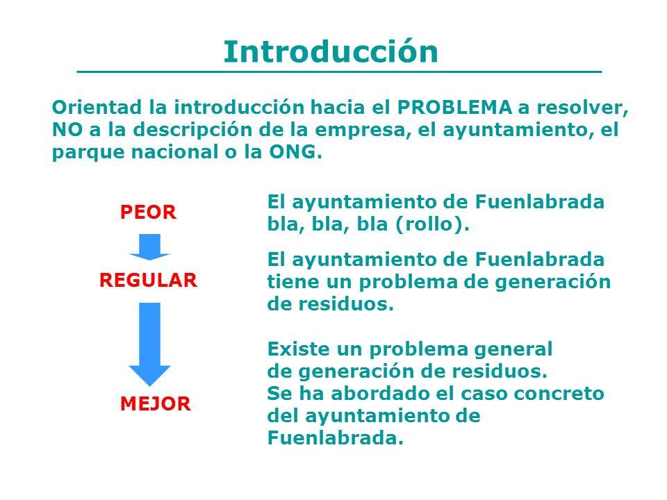 Introducción Orientad la introducción hacia el PROBLEMA a resolver, NO a la descripción de la empresa, el ayuntamiento, el parque nacional o la ONG. E