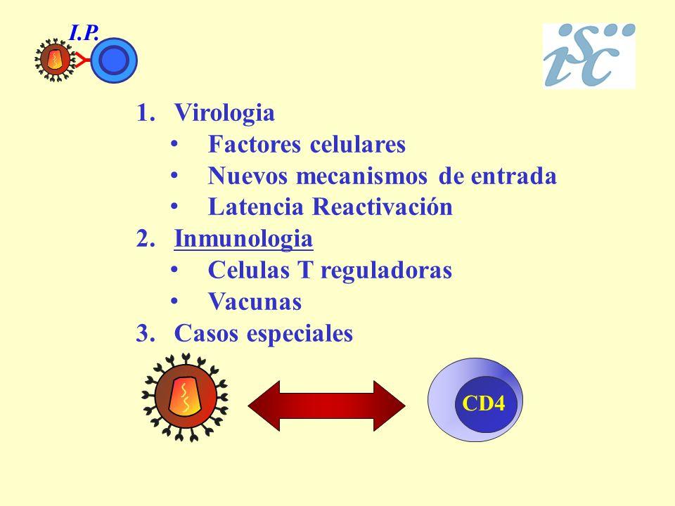 CD4 1.Virologia Factores celulares Nuevos mecanismos de entrada Latencia Reactivación 2.Inmunologia Celulas T reguladoras Vacunas 3.Casos especiales I