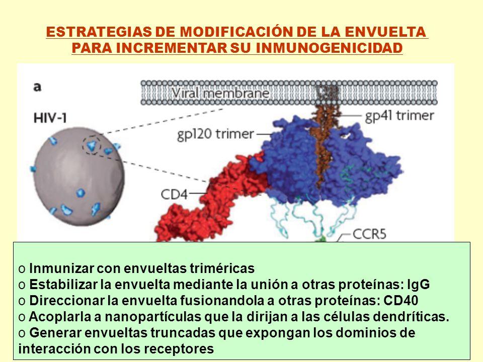 ESTRATEGIAS DE MODIFICACIÓN DE LA ENVUELTA PARA INCREMENTAR SU INMUNOGENICIDAD o Inmunizar con envueltas triméricas o Estabilizar la envuelta mediante