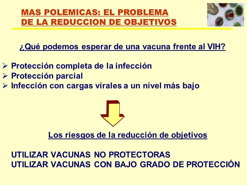 ¿Qué podemos esperar de una vacuna frente al VIH? Protección completa de la infección Protección parcial Infección con cargas virales a un nivel más b