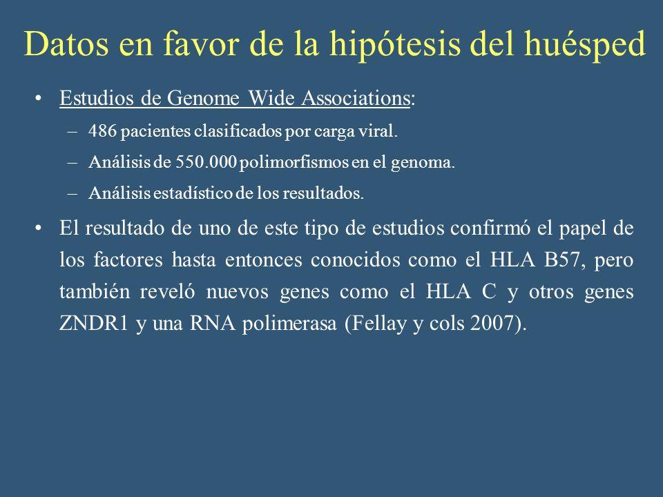 Datos en favor de la hipótesis del huésped Estudios de Genome Wide Associations: –486 pacientes clasificados por carga viral. –Análisis de 550.000 pol