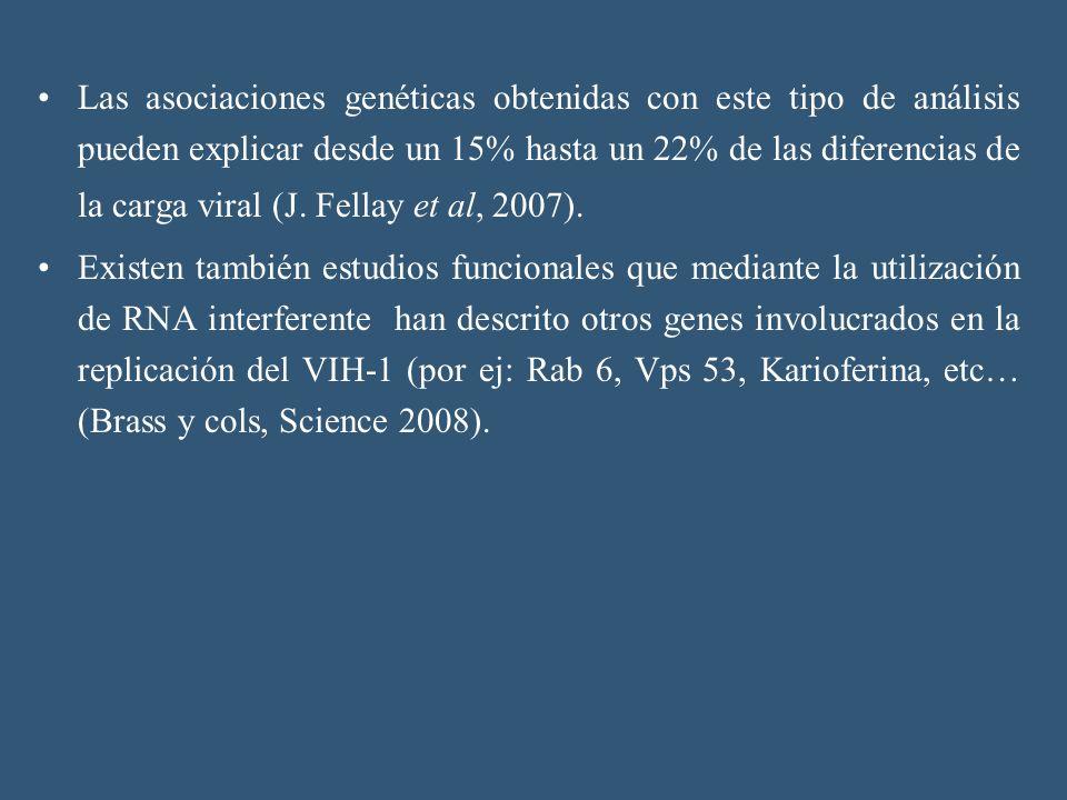 Las asociaciones genéticas obtenidas con este tipo de análisis pueden explicar desde un 15% hasta un 22% de las diferencias de la carga viral (J. Fell