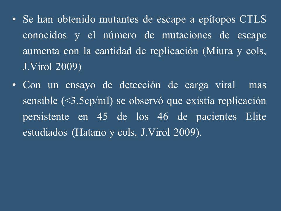 Se han obtenido mutantes de escape a epítopos CTLS conocidos y el número de mutaciones de escape aumenta con la cantidad de replicación (Miura y cols,