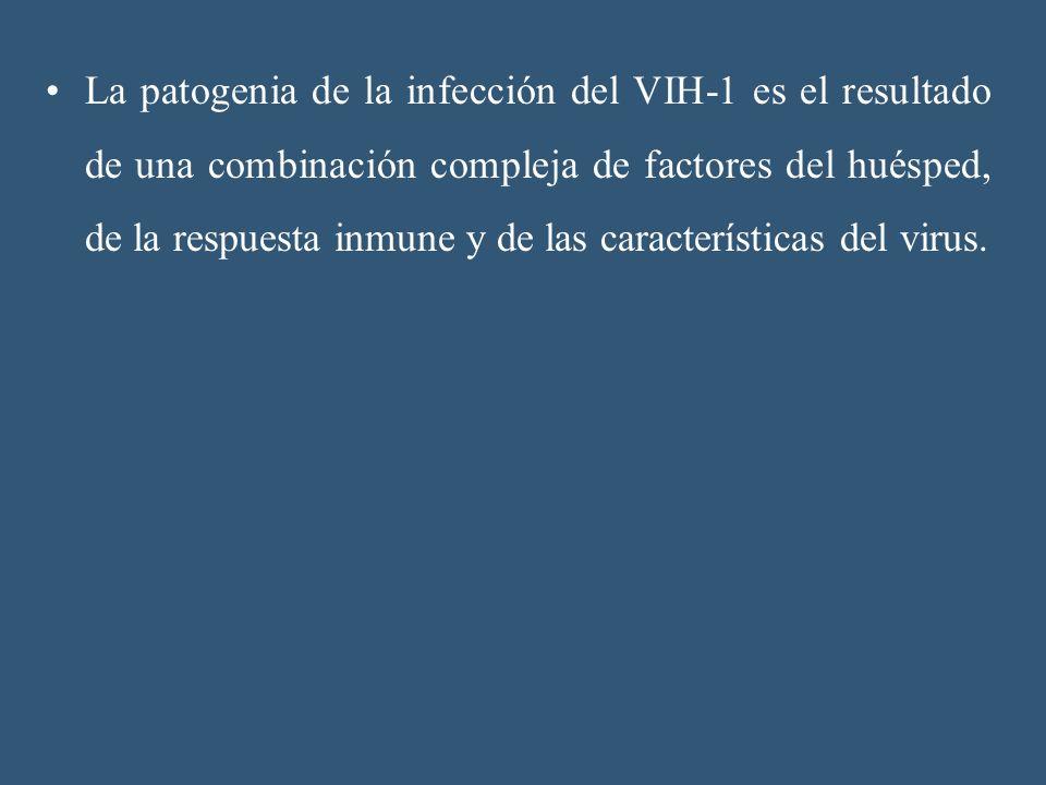 La patogenia de la infección del VIH-1 es el resultado de una combinación compleja de factores del huésped, de la respuesta inmune y de las caracterís