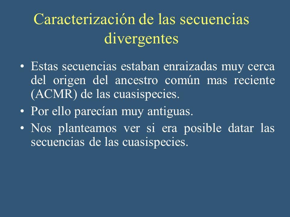 Caracterización de las secuencias divergentes Estas secuencias estaban enraizadas muy cerca del origen del ancestro común mas reciente (ACMR) de las c