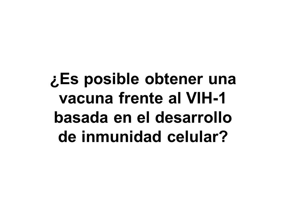 ¿Es posible obtener una vacuna frente al VIH-1 basada en el desarrollo de inmunidad celular?