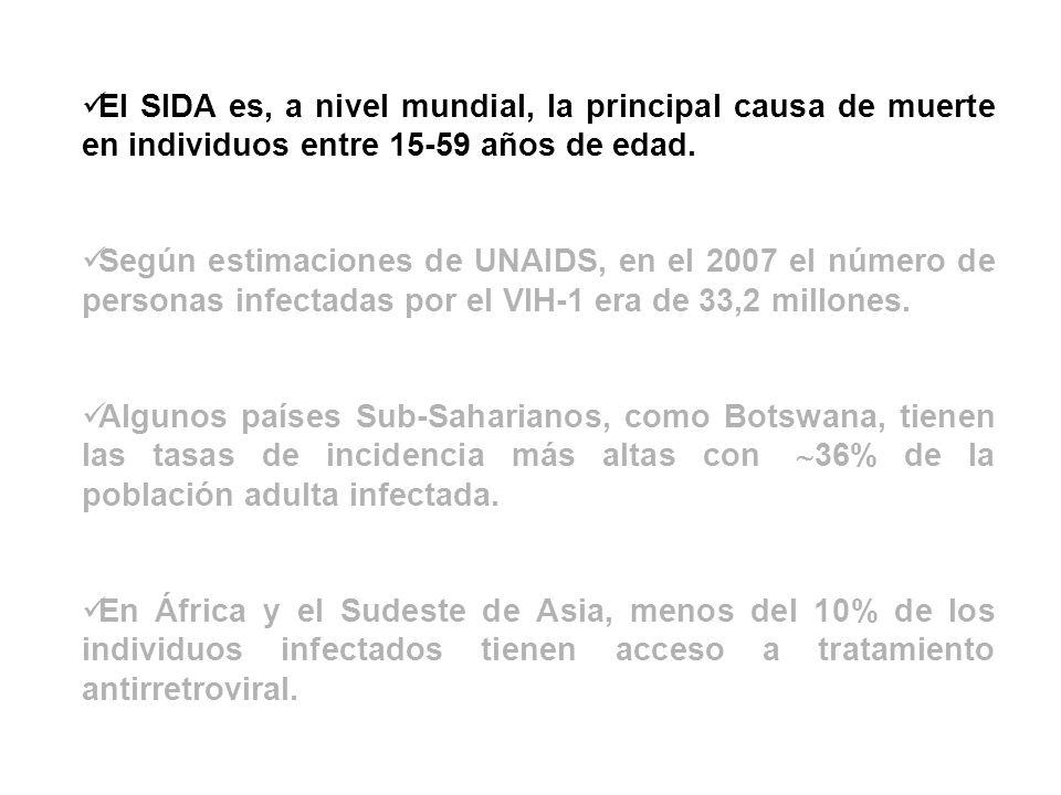 El SIDA es, a nivel mundial, la principal causa de muerte en individuos entre 15-59 años de edad. Según estimaciones de UNAIDS, en el 2007 el número d