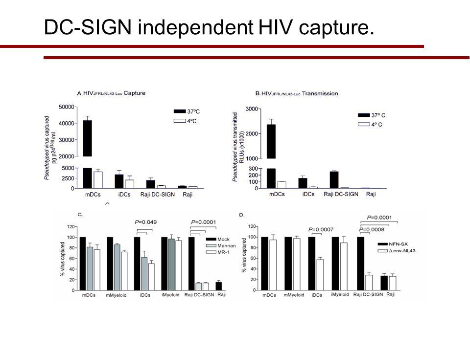 NL4-3BaL CD4-GFP+ MOLT Cells (%) 2h 293-CD4GFP+ MOLT NL4-3/BaL % MOLT CD4-GFP+ UNINFECTED INFECTED Transport of membranes.