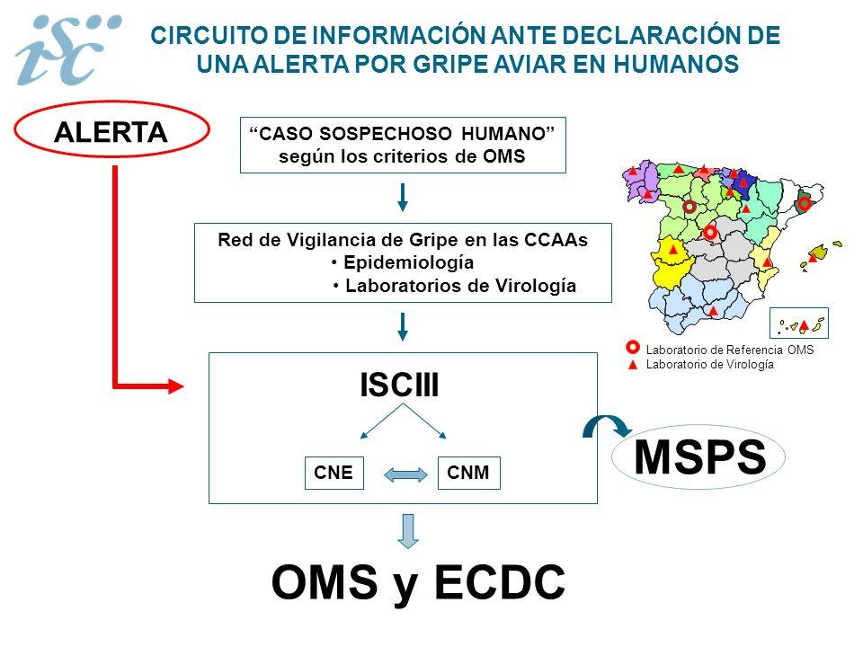 CIRCUITO DE INFORMACIÓN ANTE DECLARACIÓN DE UNA ALERTA POR GRIPE AVIAR EN HUMANOS Red de Vigilancia de Gripe en las CCAAs Epidemiología Laboratorios d