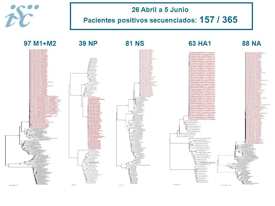 63 HA188 NA97 M1+M239 NP81 NS 26 Abril a 5 Junio Pacientes positivos secuenciados: 157 / 365