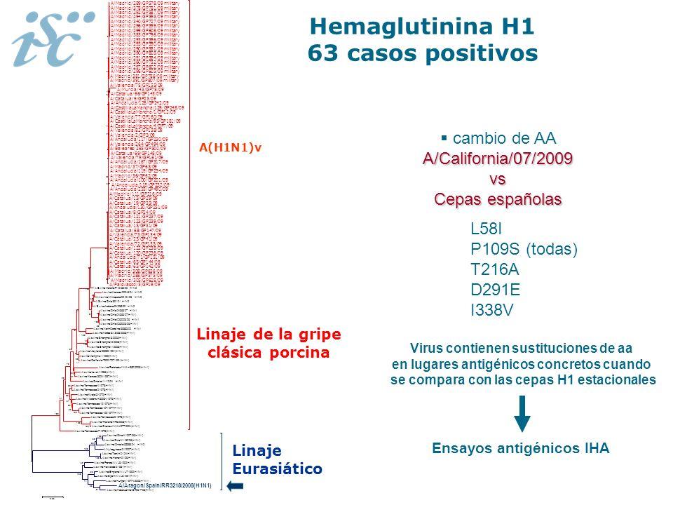 Hemaglutinina H1 63 casos positivos A/California/07/2009 cambio de AA A/California/07/2009vs Cepas españolas L58I P109S (todas) T216A D291E I338V Viru