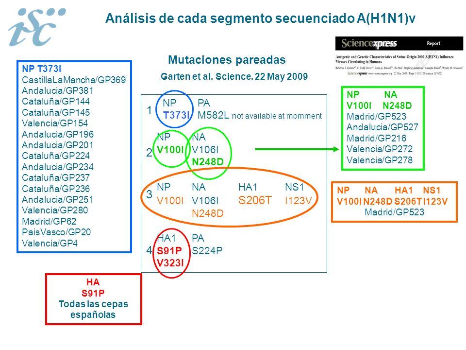NP PA T373I M582L not available at momment NPNA V100IV106I N248D NPNAHA1NS1 V100IV106I S206T I123V N248D HA1PA S91PS224P V323I Mutaciones pareadas 123