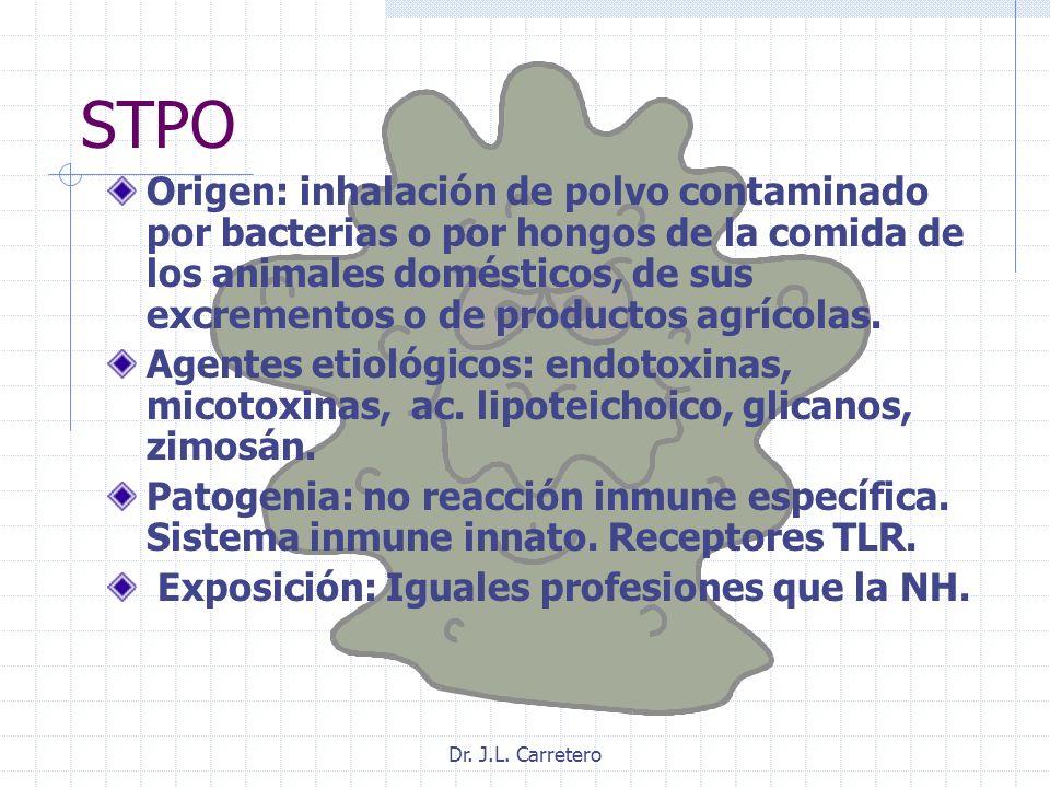 Dr. J.L. Carretero STPO Origen: inhalación de polvo contaminado por bacterias o por hongos de la comida de los animales domésticos, de sus excrementos