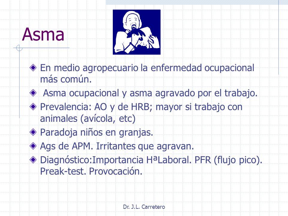 Asma En medio agropecuario la enfermedad ocupacional más común. Asma ocupacional y asma agravado por el trabajo. Prevalencia: AO y de HRB; mayor si tr