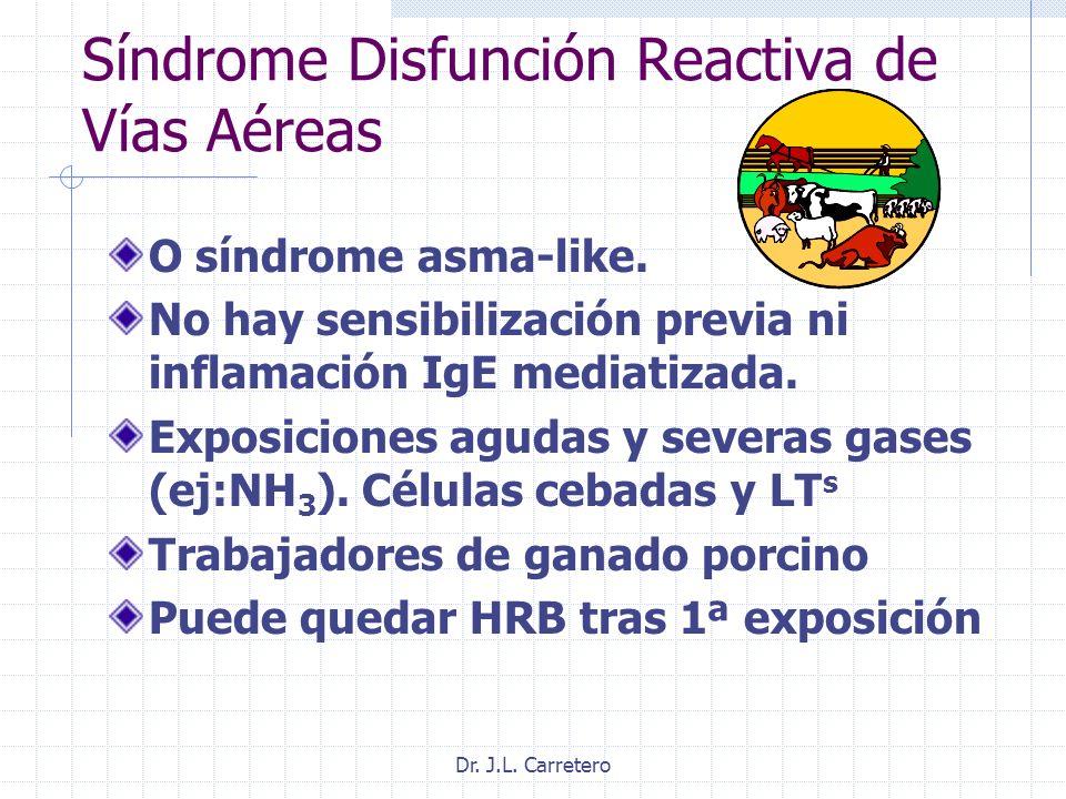 Dr. J.L. Carretero Síndrome Disfunción Reactiva de Vías Aéreas O síndrome asma-like. No hay sensibilización previa ni inflamación IgE mediatizada. Exp