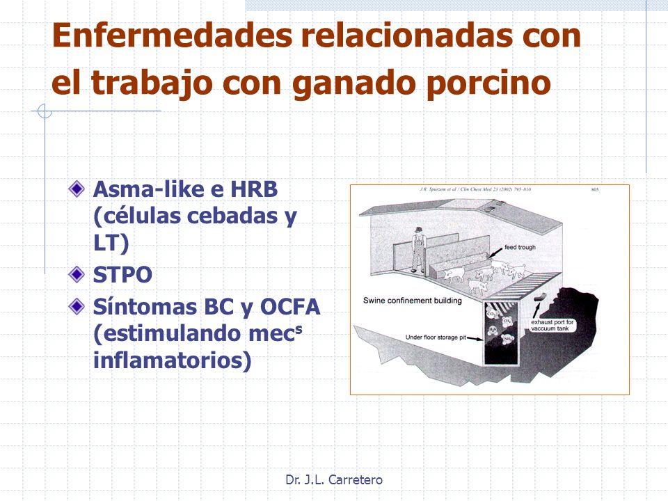 Dr. J.L. Carretero Enfermedades relacionadas con el trabajo con ganado porcino Asma-like e HRB (células cebadas y LT) STPO Síntomas BC y OCFA (estimul