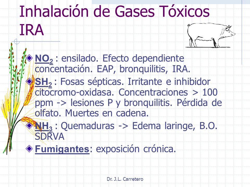 Dr. J.L. Carretero Inhalación de Gases Tóxicos IRA NO 2 : ensilado. Efecto dependiente concentación. EAP, bronquilitis, IRA. SH 2 : Fosas sépticas. Ir